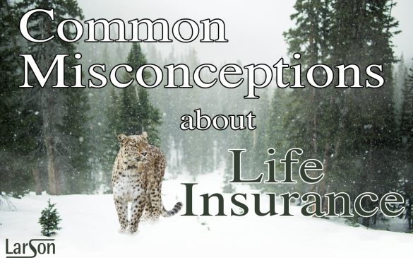 common misconceptions about life insurance